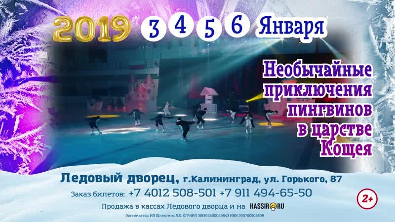 Ledovy_12s (1)