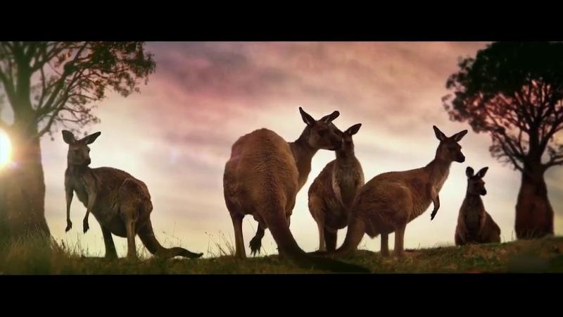 Скоро! Путешествие в Австралию в январе 2019 г. Сидней