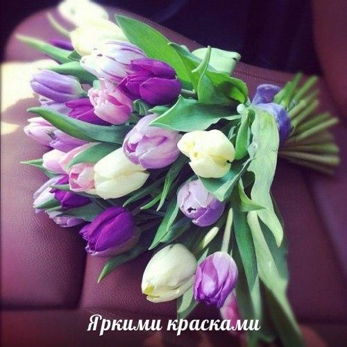 Картинки )