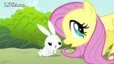 PMV We Are Never Ever Ever Getting Back Together Rarishy