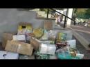Акция Спаси Дерево 2018 ГБОУ Школа 1355 Южное Бутово