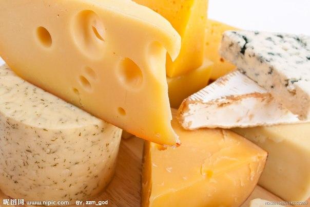 8 сентября праздник сыра