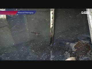 Жители улицы Путейской утопают в нечистотах