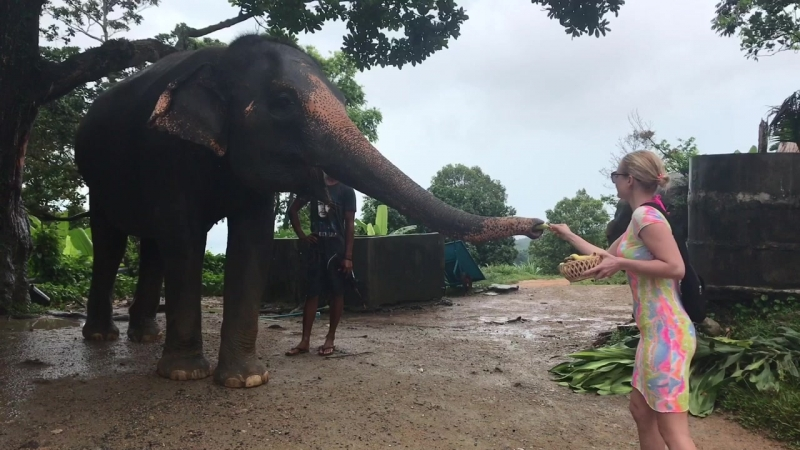 Thailand 🇹🇭🌴🐘