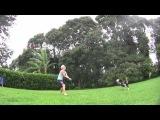Собака, играющая в волейбол лучше, чем многие люди.