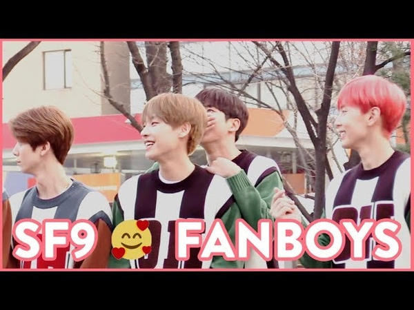 SF9 and fanboys [forever shy rowoon]