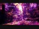 Björk - Arisen My Senses (Lyric video) - Bjork