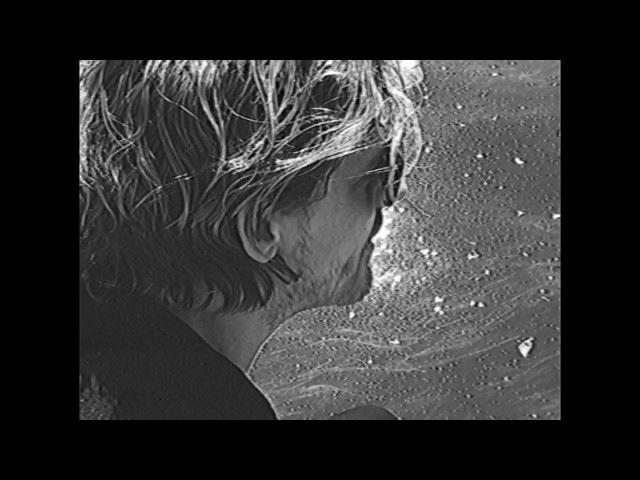 Warhaus - Love's A Stranger (Official Video)