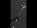 Светящиеся шары на палочке