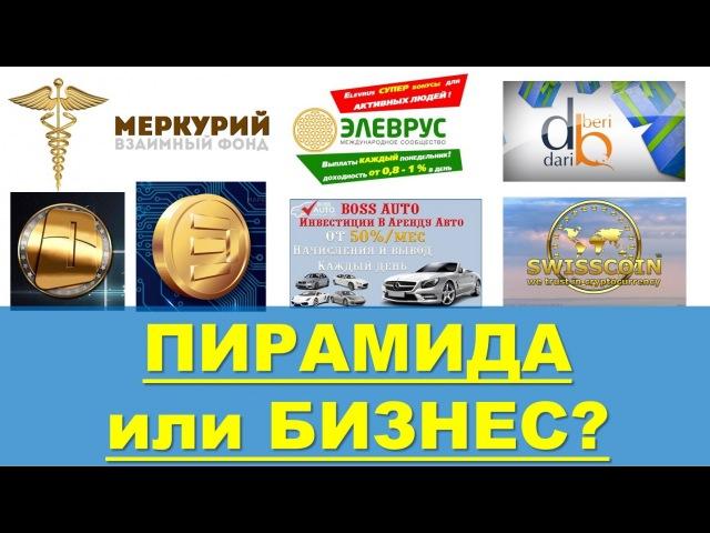 Финансовая пирамида или бизнес? Как отличить? - Николай и Ольга Лобановы