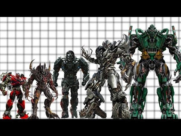 Decepticons Size (Movies)