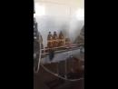 вот как делают для вас пиво