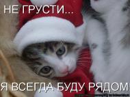 Дорогой друг ))Не грусти я всегда буду рядом ))