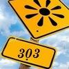 Группа 303 (СВФ РПА МЮ РФ)