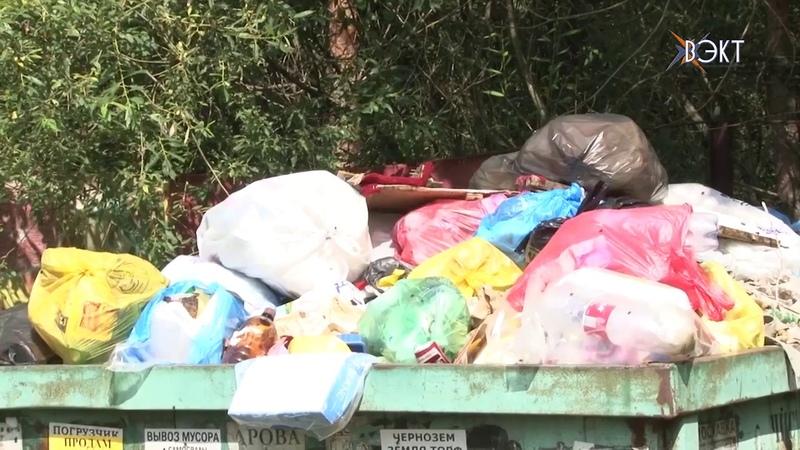 Председатель СНТ бездействует садоводы страдают Почему жители сами сбрасываются на вывоз мусора