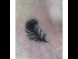 New feather for @ anaedemanaЕсли хотите записаться на мини-тату, переходите по ссылке в профиле ❤️.#feathertattoo #letteringt