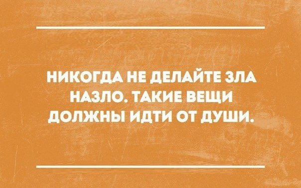 https://pp.vk.me/c7001/v7001916/15996/PnQPwaaLL6o.jpg