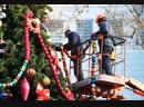 На Красной площади Курска установили новогоднюю ель
