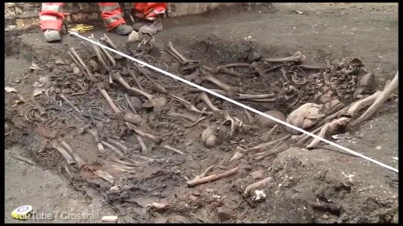 Самый древний случай бубонной чумы обнаружен в России