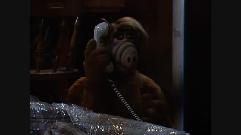 Сезон 02 Серия 17 18 Кто нибудь присмотрите за мной Часть 1 2 Альф 1986 1990 Alf Someone to Watch Over Me