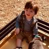 "Carissa Loethen Culiner • E! on Instagram: ""pumpkin patch play date ❤️👶🏻🐶🎃"""