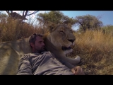 Deep House presents: GoPro  Lions - The New Endangered  [HD 720]