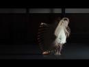 ( van Buuren - I Don-t Own You (Tune of The Century .mp4