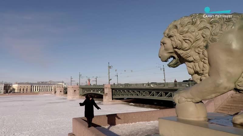 Я и моя тень: как петербуржцы радовались солнечному дню