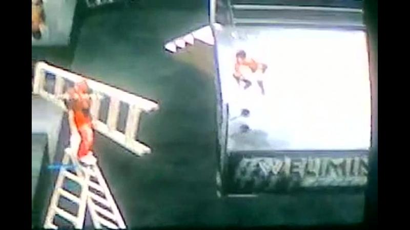Мини мистерио и лестница- Часть 3 Шеймус и мини прыгают