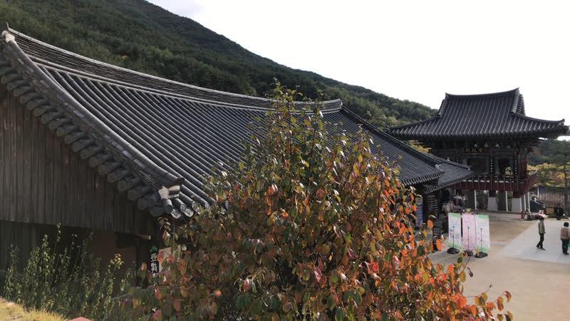 Осень в храме Хваомса Hwaeomsa VisitKorea