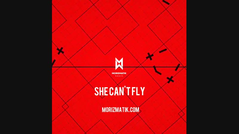 Morizmatik - She can't fly