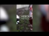 Школьницы сняли на видео, как избивали свою подругу
