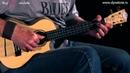 Пусть бегут неуклюже укулеле Concert HOHNER Lanikai LQA TCA