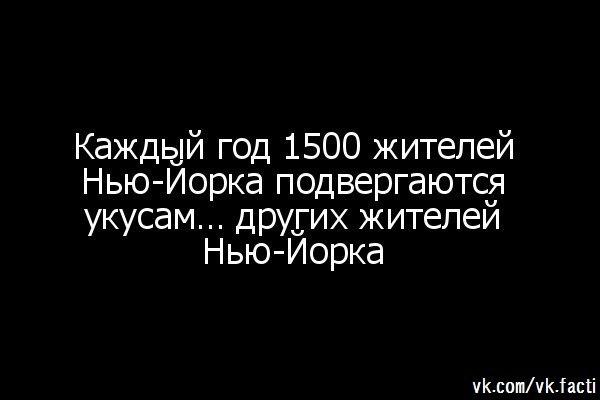 https://pp.vk.me/c7006/v7006280/1e80b/CpHcJTtODvw.jpg