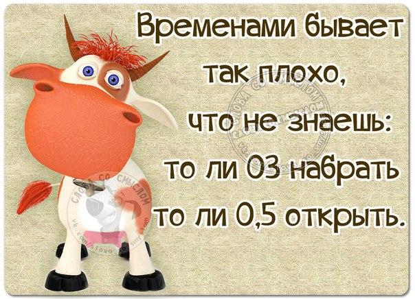 https://pp.vk.me/c615728/v615728534/88c7/zJe84ICS2r0.jpg