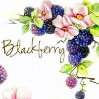 blackberry48