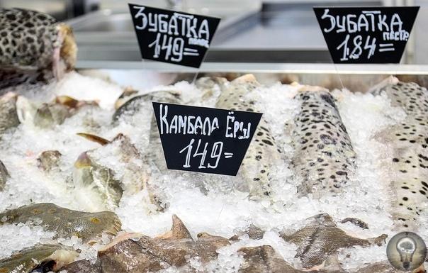 КОРОЛИ СЕВЕРА: НЕОЖИДАННЫЙ МУРМАНСК ГЛАЗАМИ МЕСТНЫХ ЖИТЕЛЕЙ Море, корабль, рыба и полярное сияние все это можно увидеть не только на гербе Мурманска, но и в самом Мурманске. Мозаичное полотно из