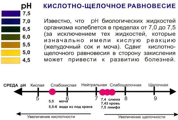 Как определить состав крови в домашних условиях