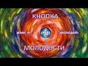 КНОПКА МОЛОДОСТИ 08 08 18