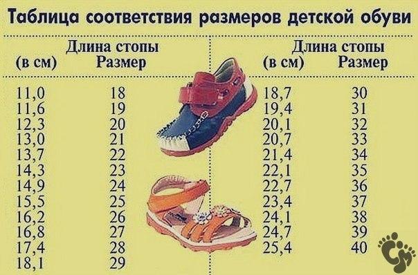 склад находится детский размер обуви до года магазинов Краснодара других