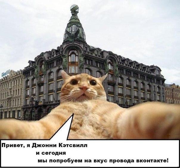 Джонни Кэтсвилл и ВКонтакте