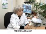 Новости Колпинского района, выпуск от 03 02 2014