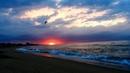 Relax Amanecer en la playa sonido del mar HD 1080p Música Relajante