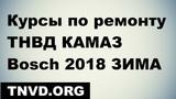 Курсы по ремонту ТНВД КАМАЗ Bosch 2018 ЗИМА !приглашение