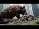 Леонардо Ди Каприо против медведя.Эпизод 1 «Выживший» англ. The Revenant