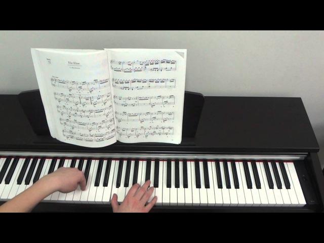 Л Бетховен К Элизе Урок для фортепиано Часть 1