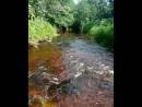 Исчезающая река Халуй