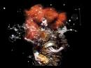 Björk — Moon