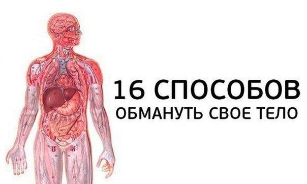 16 СПОСОБОВ ОБМАНУТЬ СВОЕ ТЕЛО