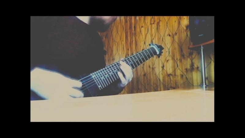 ToKi Guitars Meshuggah Style